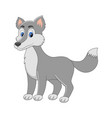 cute cartoon wolf arctic animal isolate vector image
