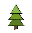 drawing pine tree forest natural environment vector image vector image