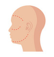 facial plastic surgery vector image