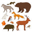 forrest wild animals collection vector image vector image
