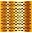 Golden perforated sheet vector image vector image