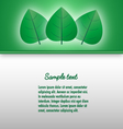 presentation document template with glowing leaves vector image vector image