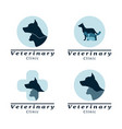 set of logo vet clinic vector image