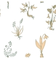 seamless pattern with wild plants vector image
