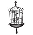 canary in cage vintage vector image vector image