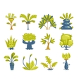 Cartoon fantasy trees and bushes set vector image