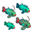 cartoon green fish with red ornaments isolated on vector image vector image