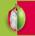 dragon fruit and lime vector image vector image