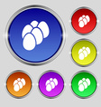 Eggs icon sign Round symbol on bright colourful