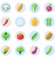 Flat Icons Vegetables Icons vector image