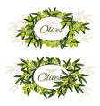 greek olives with leaves wreath around sign icons vector image