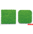green grass square pattern icon vector image vector image