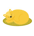 red cat sleeping on the rug cartoon style vector image