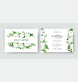 wedding invite card floral design white flowers vector image vector image