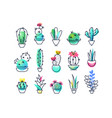 colorful icons set of indoor plants vector image vector image