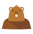 groundhog in hole icon flat style vector image