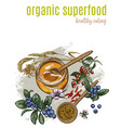 organic superfood full color poster vector image vector image