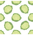pattern with cabbage vector image vector image