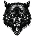 Hand Drawn Wolf Linework vector image