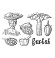 Baobab fruit tree and seeds Mortar and pestle vector image