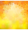 autumn leaves on blurry background vector image vector image