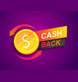cash back offer banner promotion refund vector image vector image