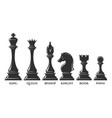 chess pieces set vector image