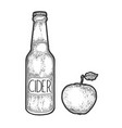 cider bottle and apple sketch engraving vector image vector image