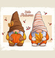 gnomes in autumn disguise with pumpkin and leaf vector image vector image