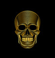 graphic print of stylized golden skull on black vector image vector image