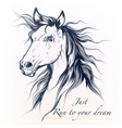 hand drawn horse in detailed style vector image