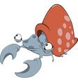 mollusk Nautilus vector image