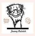 peeking funny ostrich - ostrich looks out from vector image vector image