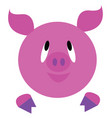 baby pink pig or color vector image