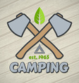 Camping symbol vector image vector image