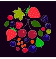 Colorful berries and leaves collection vector image vector image