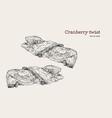 cranberry twist hand draw sketch vector image vector image