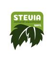 stevia leaves symbol natural organic vector image vector image