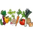vegetables big group cartoon vector image
