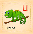 animals alphabet c is for lizard vector image vector image