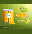 corn advertising composition vector image vector image