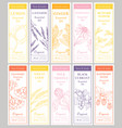 cosmetic essencial oils vertical tags vector image vector image