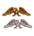 eagle or hawk golden icon sketch vector image vector image