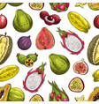 exotic tropical fruits seamless pattern background vector image
