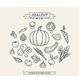 Healthy Vegetable Icon Set vector image vector image