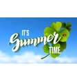It is Summer Time Lettering Background vector image vector image