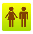 male and female sign brown icon at green vector image vector image