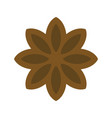 star anise icon christmas food and drink