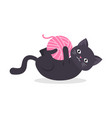 black cat playing pink a clew for knitting vector image