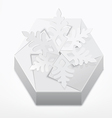 Christmas gift box with snowflake vector image vector image